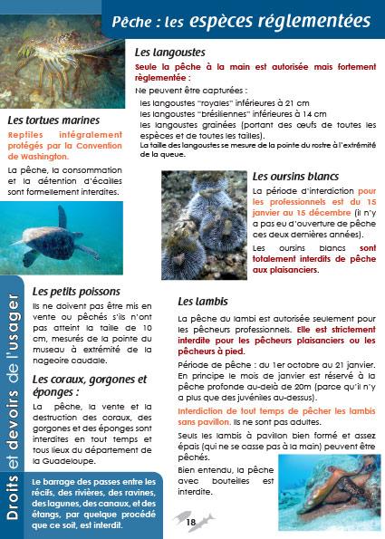 Guide usager de la mer : page intérieur 2